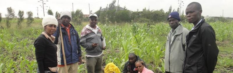 RLC PhD student and co-authors publish article on organic agriculture in Kenya