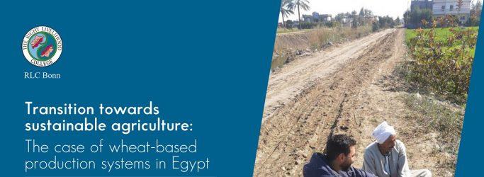 RLC Bonn Junior Researcher conducts field work in Egypt
