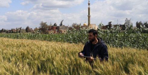 RLC Bonn: PhD candidate Ahmed Abdalla presents virtual picture exhibition